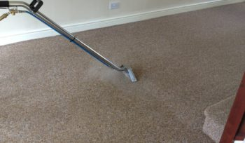 carpet upholstery cleaning services