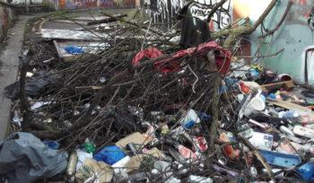 rubbish removals hull
